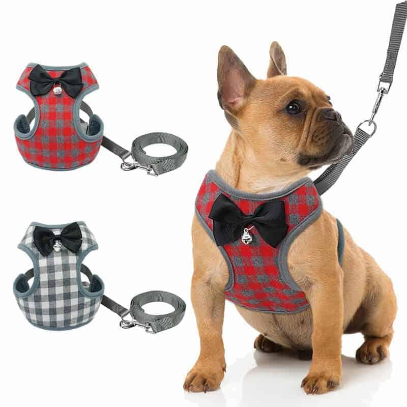 Oprsnice za male pse s povodcem z mašnico in zvoncem - RDEČA 1