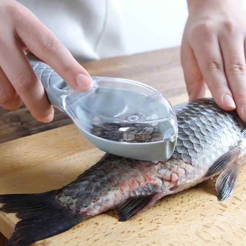 Pripomoček za odstranjevanje ribjih lusk 1