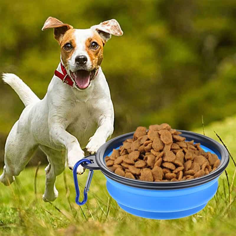 Prenosna posoda za psa 4