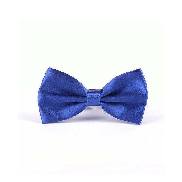 Elegantni metuljček svetlo modra barva