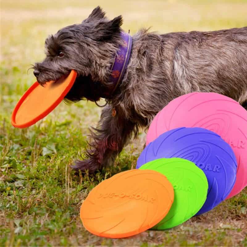Leteči disk za psa