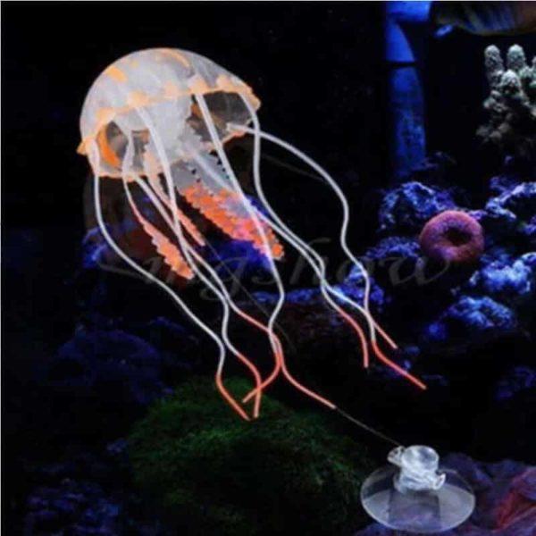 Meduza okras za akvarij