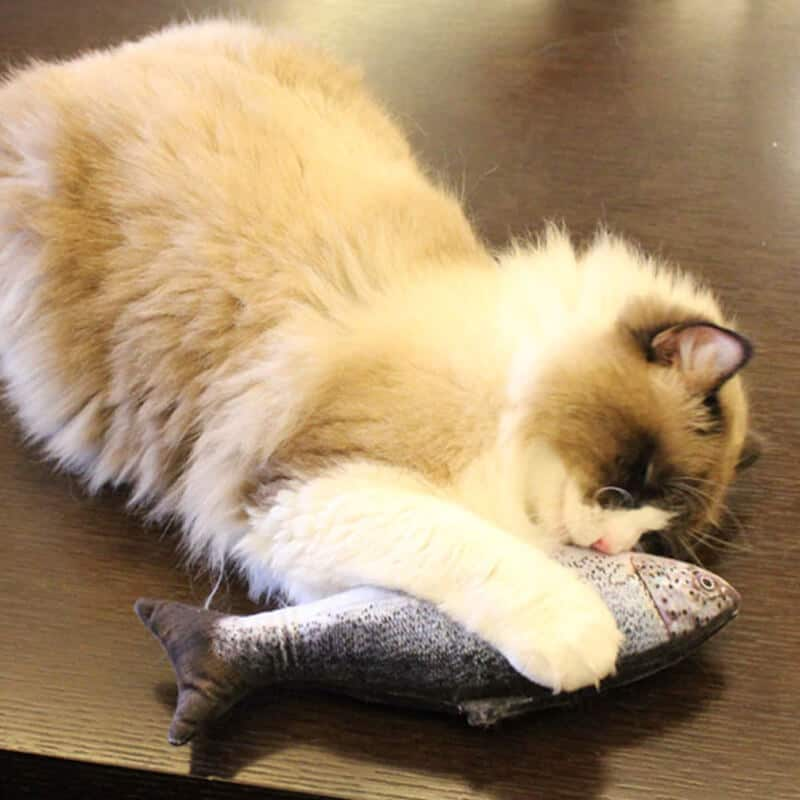 igrača za mačko v obliki ribe modre