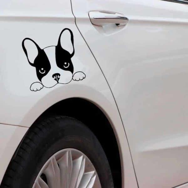 francoski buldog avto nalepka črne barve