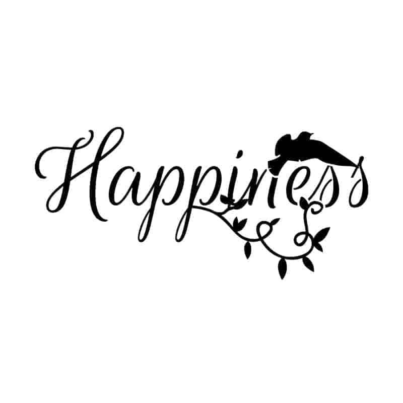 poceni stenske nalepke happiness