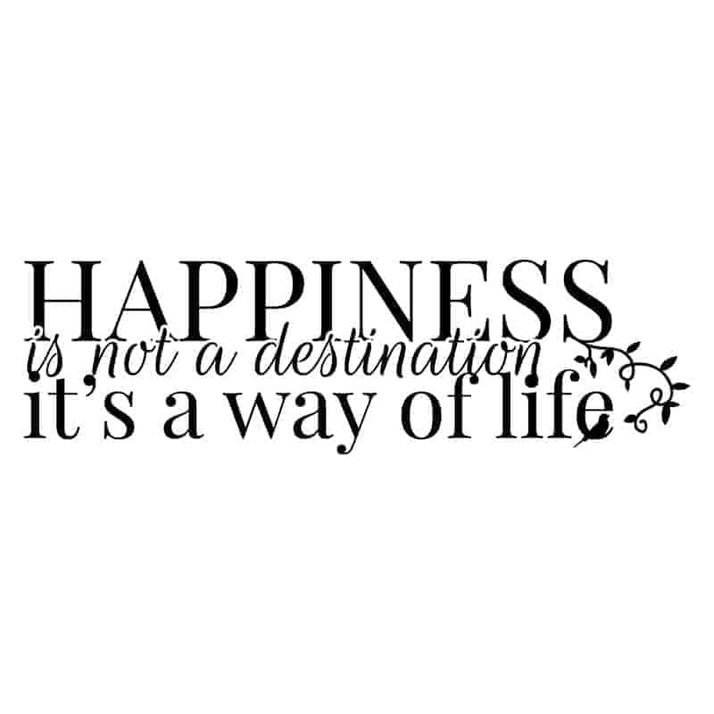 stenske nalepke happiness is not a destination it is a was of life